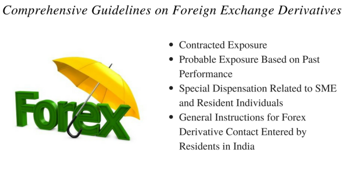 Comprehensive Guidelines on Foreign Exchange Derivatives
